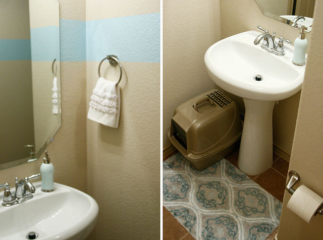 home tour: bathrooms - alyssa b. young - in the wabe